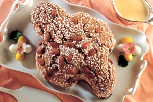 colomba brood